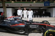 Formula one - Brazilian Grand Prix 2015 - Thursday